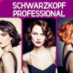 "Stručni seminar na velikoj pozornici <br> Schwarzkopf Professional – Essential Looks ""Modern Ikon"" kolekcija"