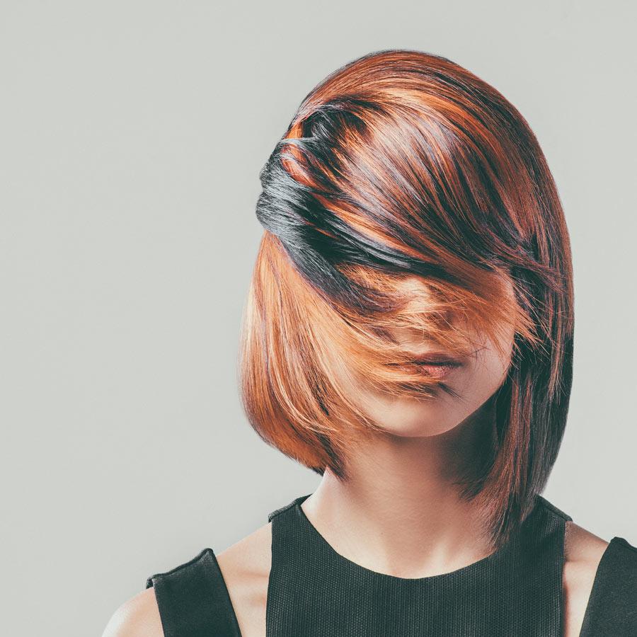 STEVO HAIR ACADEMY <br/> Kolekcija Evolution