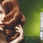Nova Essensity boja bez amonijaka i sistem za njegu bojane kose